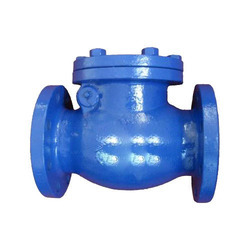Industrial Check Valve Supplier Ahmedabad